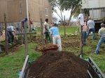 Genesis Gardens Build Day 001