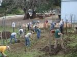 Genesis Gardens Build Day 005