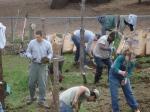 Genesis Gardens Build Day 007