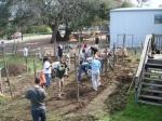 Genesis Gardens Build Day 035