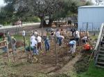 Genesis Gardens Build Day 038
