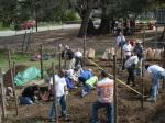 Genesis Gardens Build Day 045