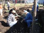 Genesis Gardens Build Day 076