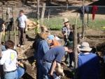 Genesis Gardens Build Day 083