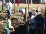 Genesis Gardens Build Day 090