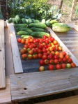 harvest051212